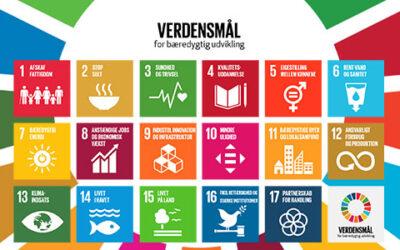 De 17 verdensmål bygger bro mellem børn og business